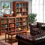 Книжный шкаф со стеклом — эстетичное хранение бумажных томов