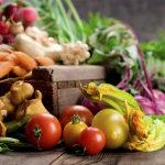 Ящики для хранения овощей — назначение, особенности, виды