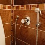 Гигиенический душ — конструкция и назначение